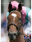 Horserace betting levy board annual report hoe werkt betalen met bitcoins rate
