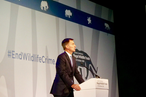 Foreign Secretary Jeremy Hunt speaking at the Illegal Wildlife Trade conference