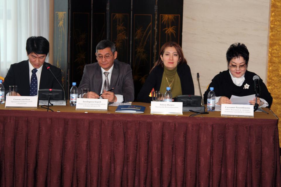 Лейля Шамел, сотрудник отдела экономики и энергетики, на конференции по зеленой экономике