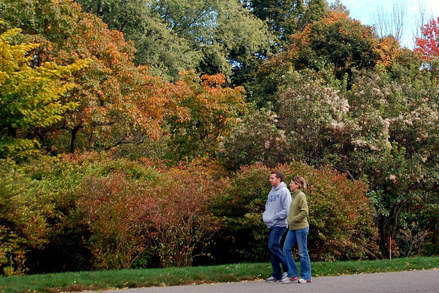 A couple walk in a park. Photo: Chris Devers.