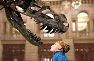 Dinosaur and boy