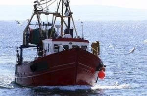 Fishing boat returning to shore