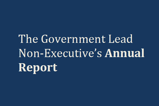 'The Government Lead Non-Executive's annual report'