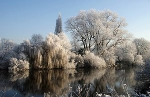pond and trees in winter - Attenborough Nature Reserve