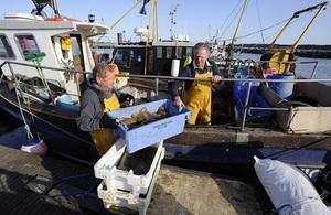 Poole fisherman