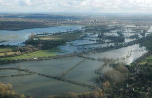 Flooded fields