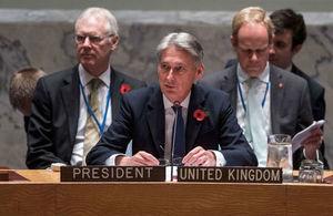 FS at UN