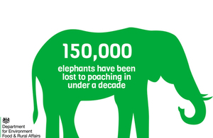 Elephant graphic - 150,000 elephants lost to poaching in under a decade