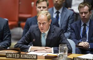 UK Ambassador to UN