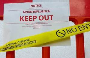 Bird flu keep out sign