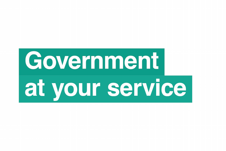 government at your service