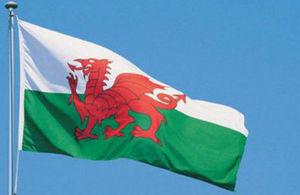 St. David's flag