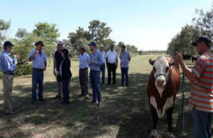 The experts visited a ranch in the Paraguayan Chaco