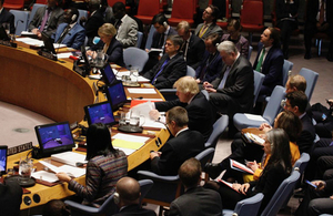 Somalia United Nations Security Council