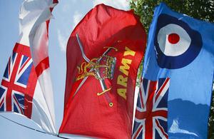 Tri-service flags