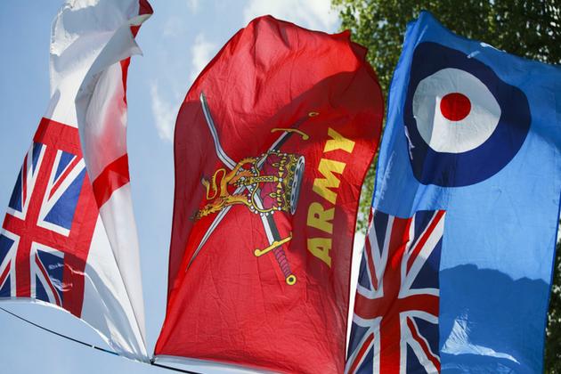 Tri- service flags