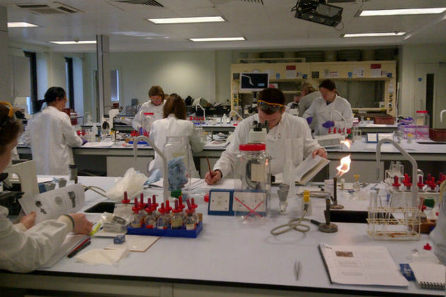 Students working at the laboratory