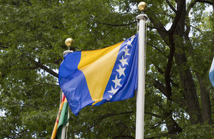 Bosnis and Herzegovina flag