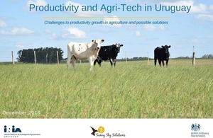 Productivity and Agri-Tech in Uruguay