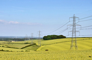Pylons in Dorset (Image credit National Grid)