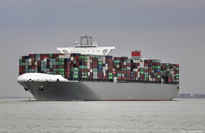 Container vessel Manhattan Bridge (photo: Ron van de Velde)
