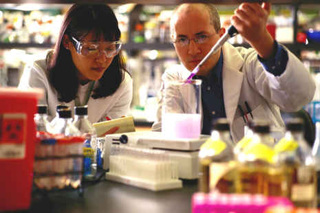 Male and female technicians performing a scientific experiment in a lab.