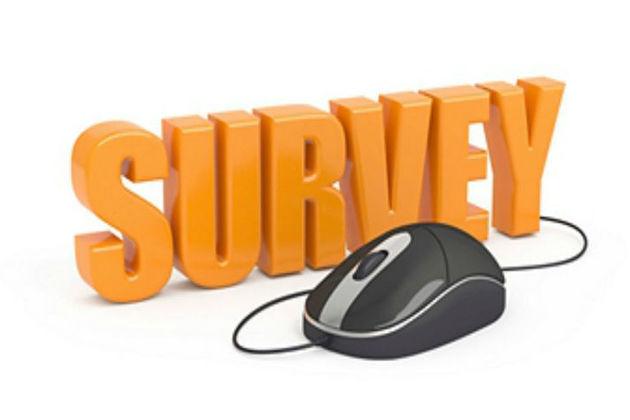 2017 Short Survey