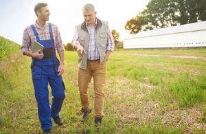 farmer and adviser walking in field