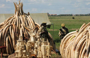 Ivory ban