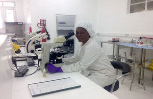 A Sierra Leonian laboratory technician in the refurbished diagnostic laboratory at Connaught hospital in Freetown.