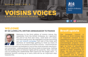 Voisins Voices: a newsletter for the British community in France