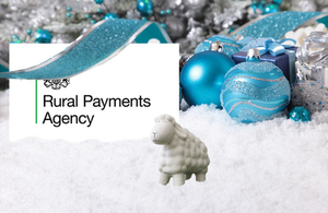 Festive image for RPA