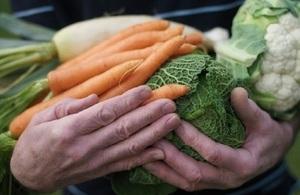 Vegetables in hands