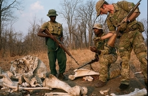 The Ministry of Defence is ramping up its efforts to stop animals being cruelly hunted in Malawi. Crown copyright.