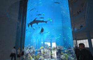 ELSS Engineering aquarium