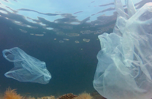 Plastic bag in the ocean.