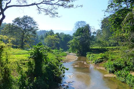 sri lanka rural bridges