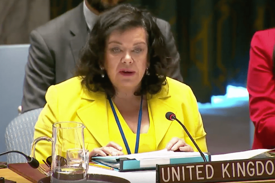 Ambassador Karen Pierce
