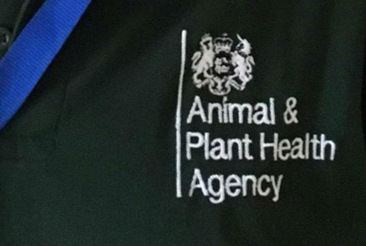 APHA logo t-shirt