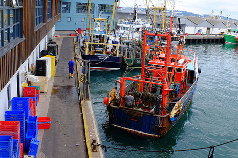 Brixham trawlers