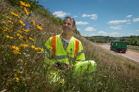 Image of worker in grassland