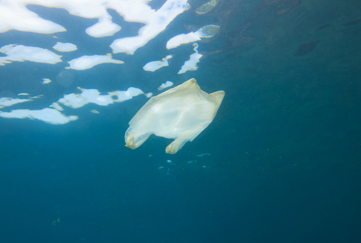 Plastic bag in sea, Pic: Thinkstock