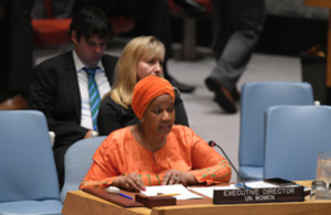 UN Security Council briefing on Somalia (UN Photo)