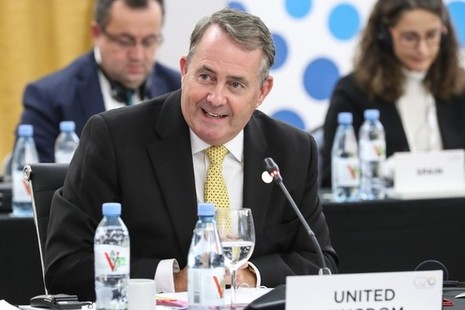 International Trade Minister Liam Fox attends the G20 trade and investment meeting in Argentina