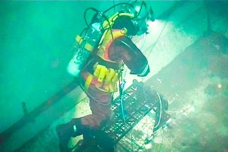 A diver works in the Sizewell A Site pond