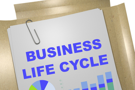 Paper report with title Business Lifecycle