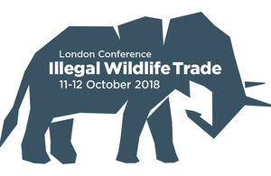 London Conference on Illegal Wildlife Trade (11 to 12 October 2018) on a grey elephant outline