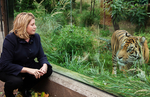 International Development Secretary Penny Mordaunt with a Sumatran Tiger at London Zoo.