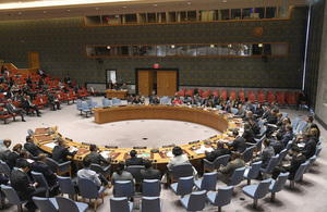 UN Security Council briefing on The Root Causes of Conflict - The Role of Natural Resources (UN Photo)