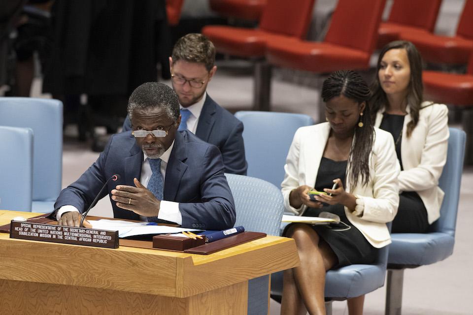 UN Security Council briefing on the Central African Republic (UN Photo)